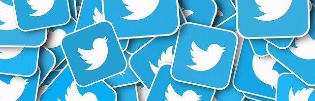 Twitter Social Media Icon Social  - geralt / Pixabay