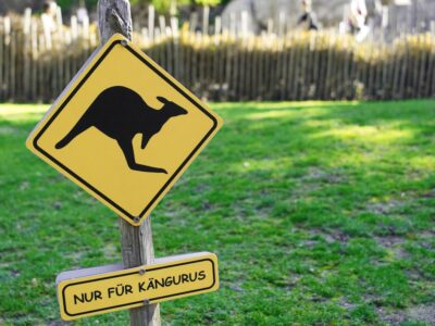 Kangaroo Shield Prohibitory Warning  - dlohner / Pixabay